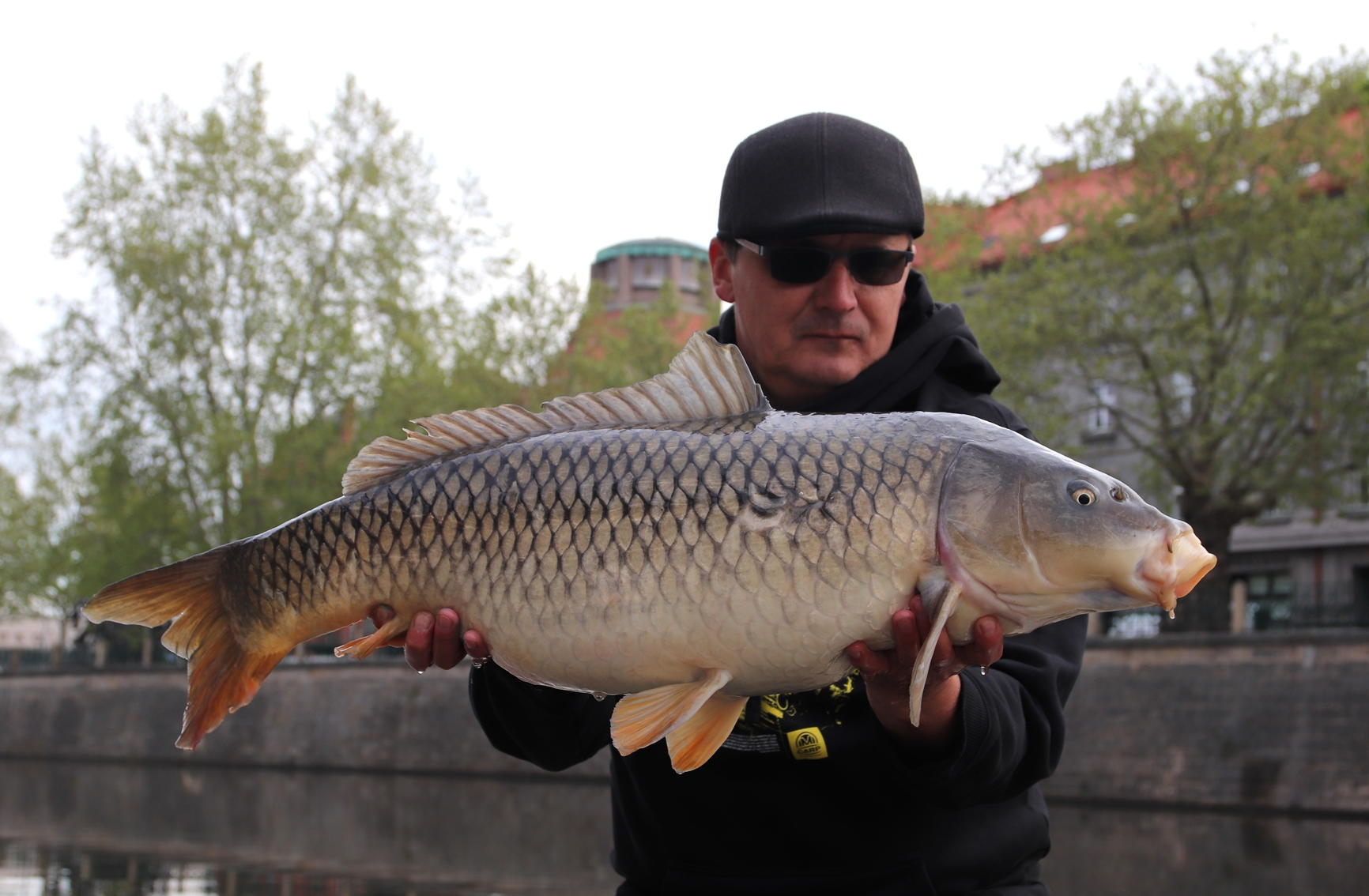 Boilies Mivardi Rapid Easy Catch Česnek & Chilli 950 gr 24 mm